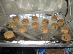 Chocolate chip peanut butter cookies...low carb!