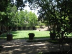 University of Texas at Arlington. The Architecture Bldg's courtyard. So peaceful!